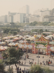 Agricultural Carnival in 1993